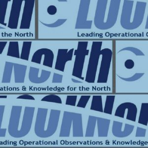 Looknorth logo