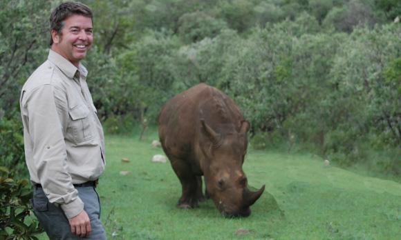 stoodley faces rhino