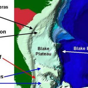 NOAA Bathyometry Blake Escarpment