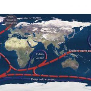 sos global ocean