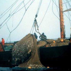 spanish factory trawler fishin