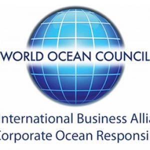 WOC new logo